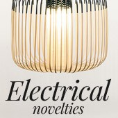 Electrical novelties